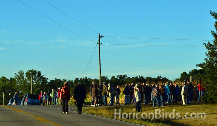 Craniacs gather to watch flight training, 14 September 2013, photo by Pam Rotella